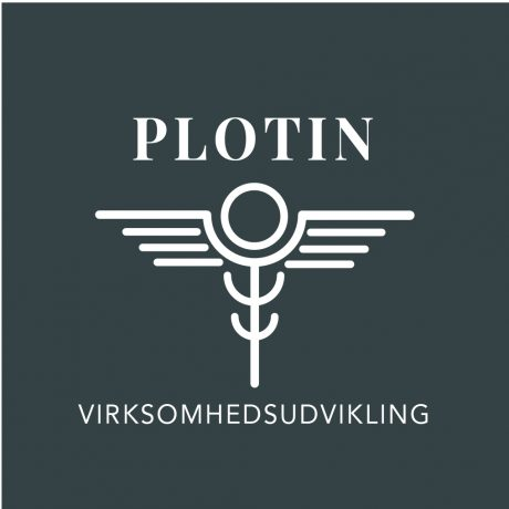 plotin-brand-dna-oplaeg-1b